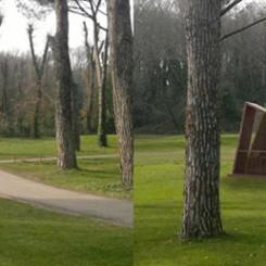Buvette per un golf club (Olgiata), rendering